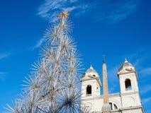 Xmas tree Rome Italy christmas time Stock Images