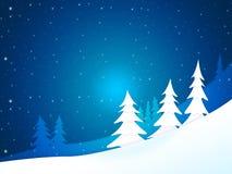 Xmas Tree Shows New Year And Celebration Stock Photography