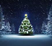 Xmas tree in winter snowy woods. Blue seasonal landscape background 3D illustration Stock Photo