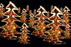 Xmas trees Royalty Free Stock Photo