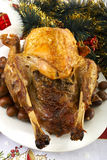 Xmas turkey Royalty Free Stock Photography