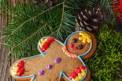 Xmass idea, gingerbread man Royalty Free Stock Photo