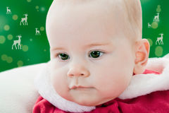 Xmast portrait of a baby girl stock images