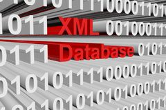 XML database. In form of binary code, 3D illustration Stock Image