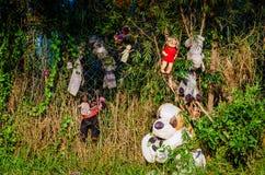 Xochimilco kana?y Wyspa lale - Isla De Las Munecas zdjęcie royalty free