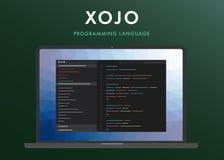 Xojo język programowania royalty ilustracja