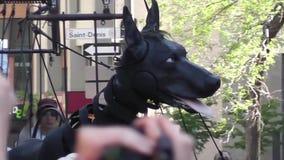 XOLO гигантская собака ` s находилось в Монреале, Квебеке акции видеоматериалы