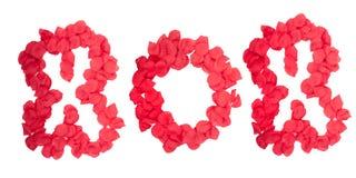 XOX scritto in petali di rosa Immagine Stock