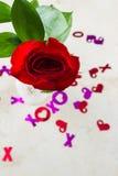Xoxo abraza y los besos con una rosa roja Foto de archivo libre de regalías