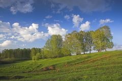 XP style. Spring landscape royalty free stock images