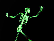 Xray Bone 2. An image of an xray of a skeleton, a good Halloween or possible medical based image Stock Photos