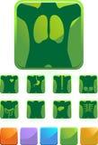 Xray - Green Royalty Free Stock Photo