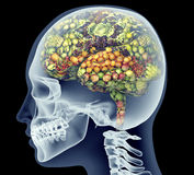 Xray of human head with fruit and vegetables for brain. Stock Photography