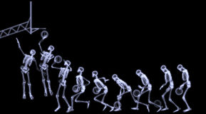 Xray Of Human Skeleton Playing Basketball Royalty Free Stock Image