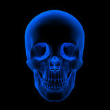 Xray of human Skull / Head Stock Photos