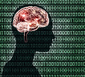 Xray image of human head with binairy code and a brain Royalty Free Stock Image