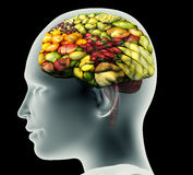 Xray image of human head with fruit for a brain. Stock Image