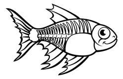 XRay Tetra Fish Cartoon Character. An X Ray Tetra Fish animal cartoon character outline coloring illustration Royalty Free Stock Photo