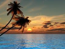 xs oceania Zdjęcie Stock