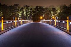 Xuanwu Chinese New Year Night Royalty Free Stock Image
