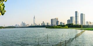 Xuanwu Lake and Nanjin city Stock Photography