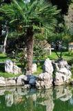 Xuanwu Lake park scenery Stock Photography