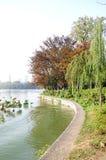 Xuanwu Lake park scenery Stock Images