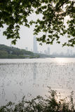 Xuanwu lake Park scenery Stock Photography