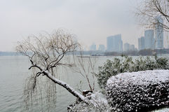 Xuanwu Lake Park Snow scene Royalty Free Stock Photography