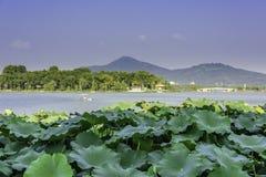 Xuanwu Lake and Purple mountain stock photo