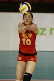 Xue Ming (Chi) stock fotografie