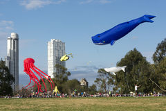XV Kites Festival Rosario Stock Photos