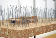 XVII International Bienal da arquitetura Foto de Stock Royalty Free