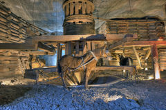 xviii wiek końska kieratowa drewniana maszyneria w Wielickiej Solankowej kopalni, Wielickiej, Polska, Europa Fotografia Royalty Free