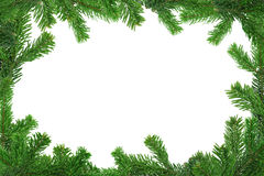 Xxl image of spruce twig frame Royalty Free Stock Photos