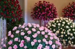 XXVIII kwiat i sztuka festiwal w Ksiaz kasztelu Zdjęcie Stock