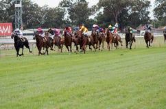 XXXX Gold Strawberry Road Handicap. Horses racing during the XXXX Gold Strawberry Road Handicap Horse Race; Aami Stradbroke Races, Eagle Farm, Brisbane, QLD Royalty Free Stock Image