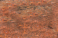 Xxxxl size photo of brick wall Royalty Free Stock Image