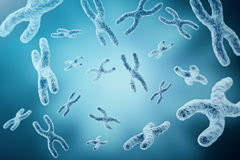 XY-chromosomes as a concept for human biology medical symbol gene therapy or microbiology genetics research. 3d Royalty Free Stock Photography