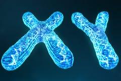 XY digitala konstgjorda kromosomer med DNA:t som bär genetiska koden Genetikbegrepp, begrepp för konstgjord intelligens stock illustrationer