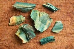 Xylindein, green-oak. Xylindein pigment on wood due to Chlorociboria Aeruginascens fungus Stock Image