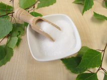 Xylitol. In small bowl an fresh birch twigs royalty free stock photo