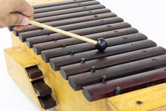 Xylofonen Arkivfoto