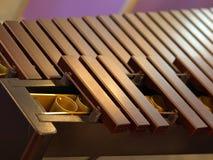 Xylofoon Stock Afbeeldingen