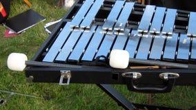 Xylofoon en stokken royalty-vrije stock afbeelding
