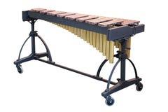 Xylophone Fotografie Stock