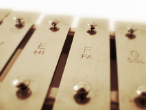 Xylophone. Musical instrument in the percussion family stock image