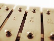 Xylophone Stockbild