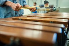 Xylophone, marimba or mallet player with sticks,. Musician in action with percussion instrument during a concert or performance Royalty Free Stock Photos