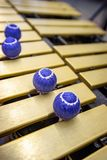 Xylophone, marimba or mallet player with sticks,. Percussion instrument during a concert or performance with cheerfully colored drum sticks Stock Image